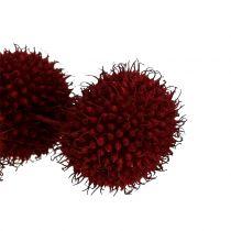 Planfrukter torkade mörkröd 250g
