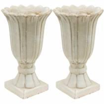 Dekorativ amfora, bägare för plantering, bägare tulpanplantningskanna Ø12cm H25,5cm 2st