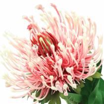 Protea Artificial Pink 73cm