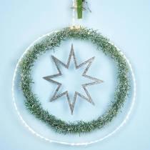 Ring med mikro-LED Ø38cm varmvit 125L vit För utsidan och insidan