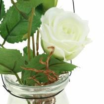Rose i en vit vit H23cm