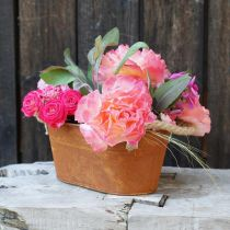 Metallskål med handtag, höstdekoration, planter med patina L22cm H11cm