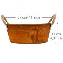 Växtkruka med handtag, örtskål, höstdekoration, patina L28cm H11cm