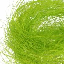 Sisal vårgrönt dekorativt gräs 500g