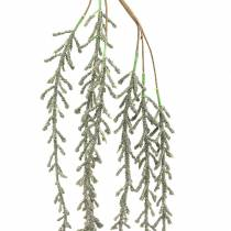 Suckulent tendril hängande grön, brons metallic 114cm