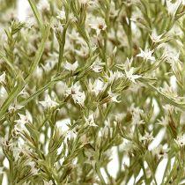 Lila, torkade blommor, Statice Tatarica, hav lavendel, limonium, naturliga 100 g