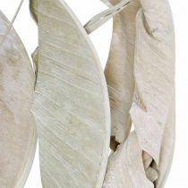 Strelitzia blad tvättade vita, torkade 45-80cm 10st