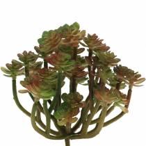 Sukkulent växt konstgrön 14cm