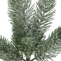 Grangren grön isad 30 cm 3st
