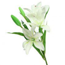 Lilja vit 58cm