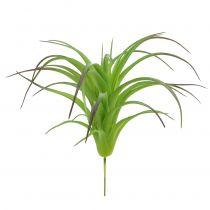 Deco tillandsie grön 16 cm 4st