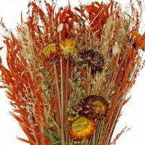 Torkade blommor bukett orange mix 42cm