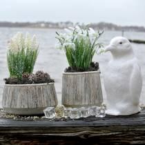 Planter vas betong trä design Ø15cm