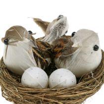 Fågelbo med ägg och fågel 6st