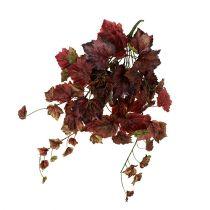 Vinrankan hängar grön, Bordeaux 67cm