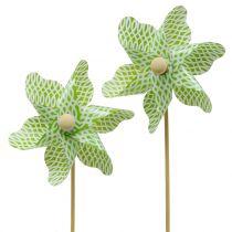Väderkvarn Mini Grön-Vit Ø9cm 12st