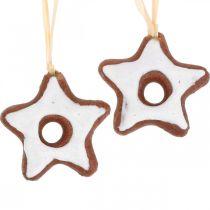 Julgransdekorationer kanelstjärnor dekoration stjärna plast 5cm 24st