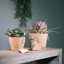 Zinkpanna med jute planter Ø13cm H12cm