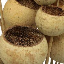Bell Cup mix på en pinne naturlig 15st