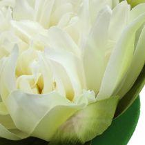 Konstgjord lotusblomma kräm 13cm 4st