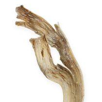 Natraj antler träblandning blekt 10st