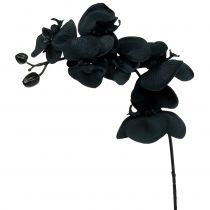 Orkidé för att dekorera svart 54cm