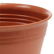 """Planter """"Michele"""" terrakotta Ø 8,5 - 22 cm, 1 st"""