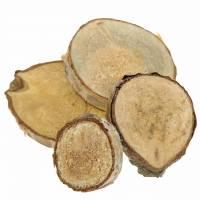 Björkskivor runda naturliga 5 cm 1 kg för dekoration med bark