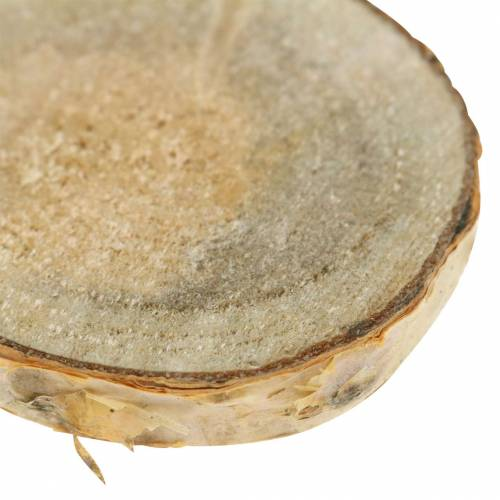 Björkskivor runda naturliga 5cm 1kg för dekoration med bark
