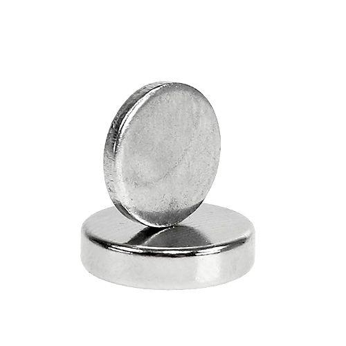 Corsage magnet 12 x 3 mm 10st