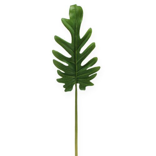 Dekorativa ark Philodendron Green W11cm L34cm 6st