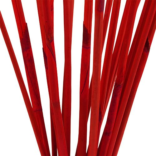 Dekorativa pinnar, Elephant Reed Red 20st