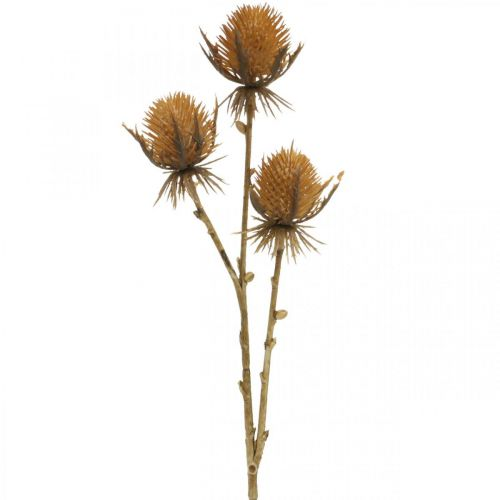 Tistelgren brun konstgjord växt höstdekoration 38cm