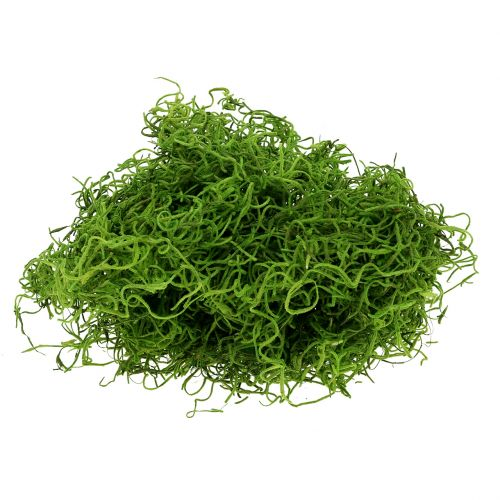 Jungle moss vårgrön 250g