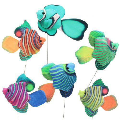Dekorativa pluggfiskar blandade färger 6st