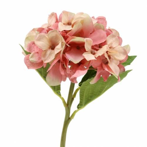 Hortensia beige / rosa 35cm