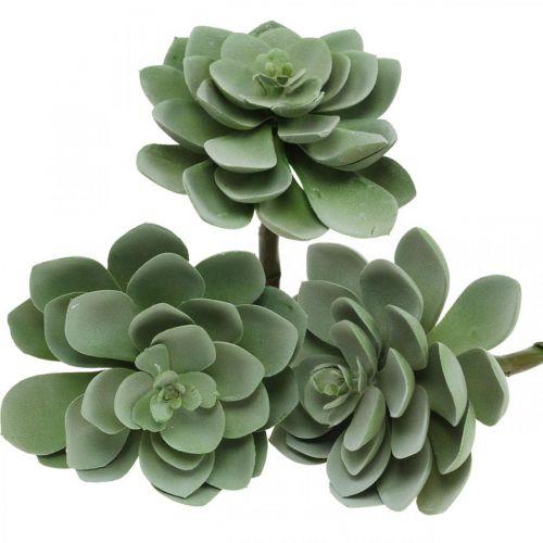 Konstgjord saftig växtdekoration konstgjorda växter gröna 11 × 8,5cm 3st