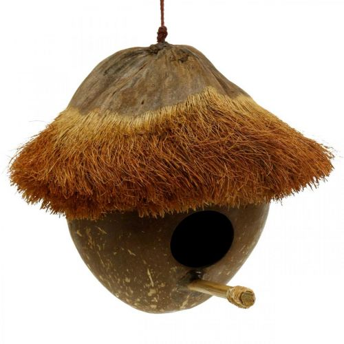 Kokos som häcklåda, fågelhus att hänga, kokosnötsdekoration Ø16cm L46cm