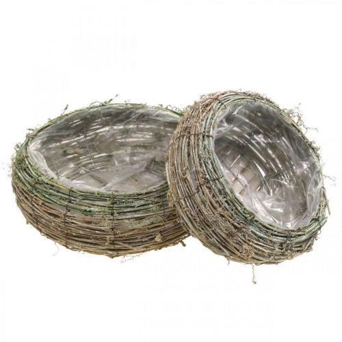Växtkorg rund tvåfärgad vinstock, trä Ø18 / 25cm, uppsättning med 2 st