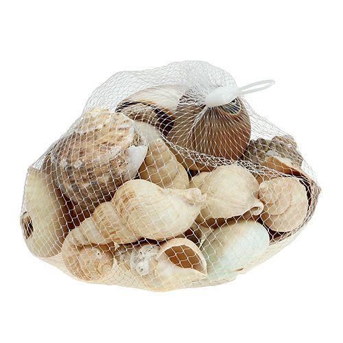 Maritim dekorationsskal mix 400g naturlig