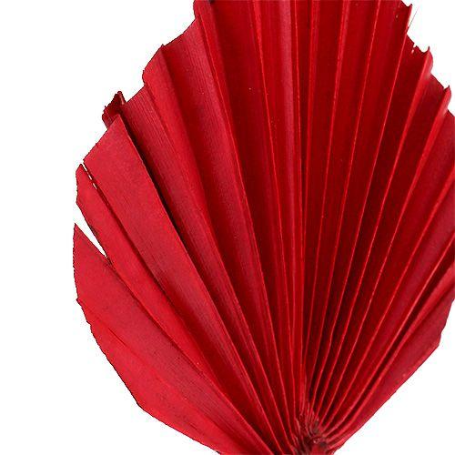 Palmspear mini röd 100p