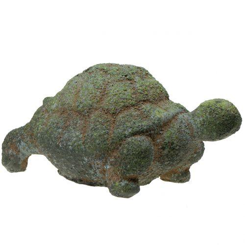 Trädgårdsfigur sköldpadda mossig 30 cm x 18 cm H15cm