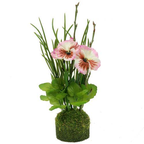 Pansy med mossbalar rosa 31cm