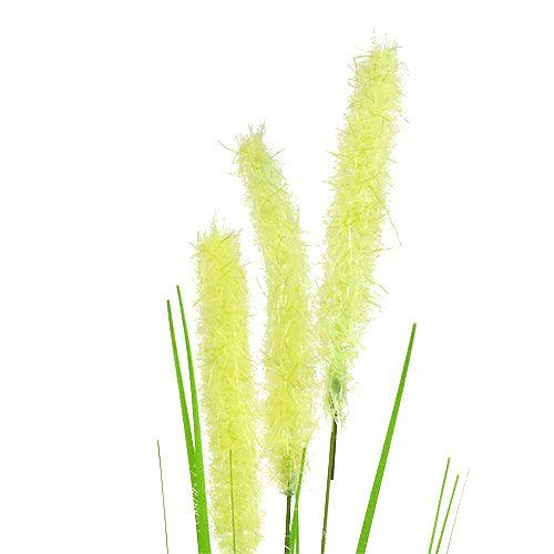 Lökgräs 68cm grön 6st