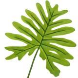 Philodendron bladgrön 40cm