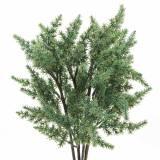 Juniper gren konstgrön 36cm 4st